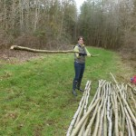 Lisa builds the pole pile